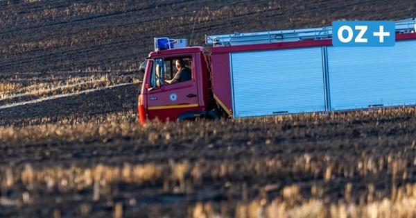 Getreidefeld auf der Halbinsel Wittow fängt Feuer – 27000 Euro Schaden