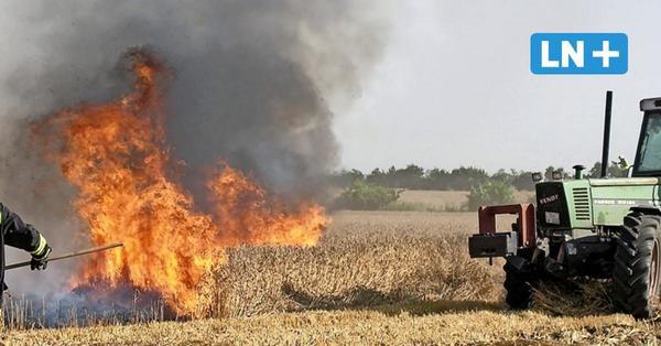 Feuerwehren gefordert: Warum es auf Ostholsteins Feldern so häufig brennt