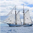 Teilnehmerschiffe der Superlative: Diese Segler steuern die HanseSail in Rostock an