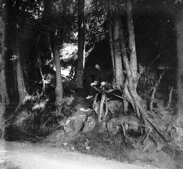 De historische foto die de exacte locatie van Vincent van Goghs schilderij Boomwortels bevestigt. De foto werd ontdekt op de blog van het Pontoise Museum.