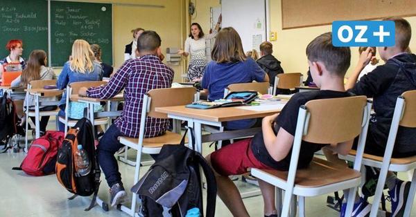 Greifswalds weiterführende Schulen im Porträt: Wohin nach der Grundschule?
