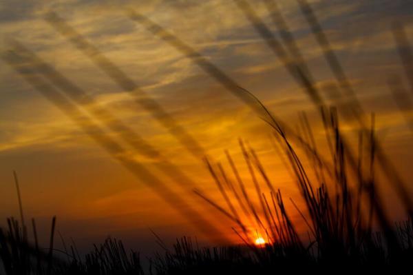 Sonnenuntergang Dünen in Lubmin (Foto: Enrico Lütt)