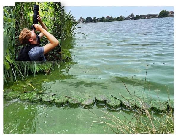 Huisbioloog Sam: Blauwalg in de Zaan - De Orkaan Junior