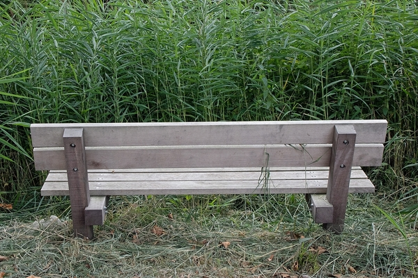 50woordenfoto: Zaans groene bankjes #3 | De Orkaan