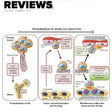 Sodium channelopathies of skeletal muscle and brain