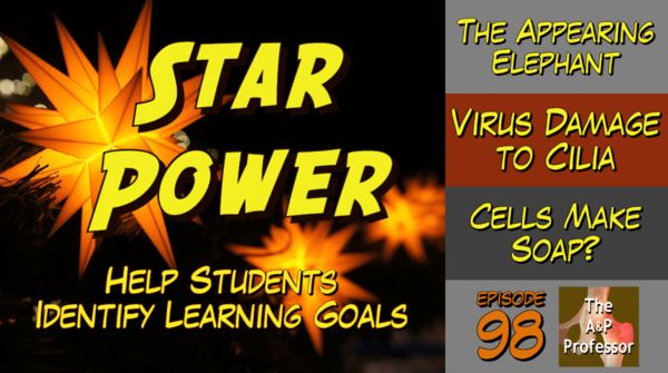 Star Power Helps Students Identify Learning Goals | TAPP 98