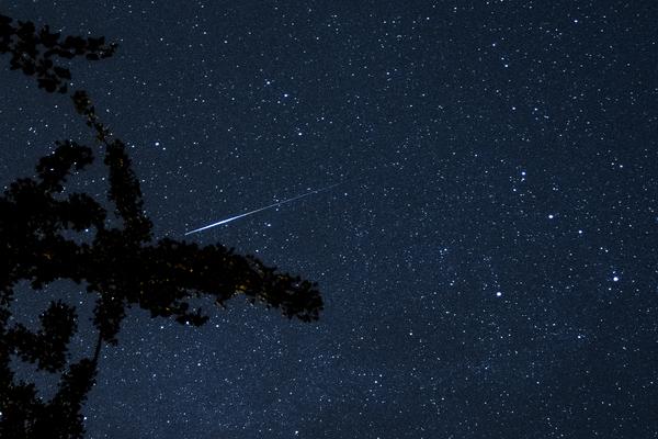 Sternschnuppen sind in den kommenden Nächten gut zu beobachten.
