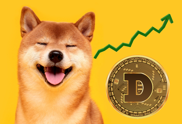 Looking back at the rise of Dogecoin & its current investors