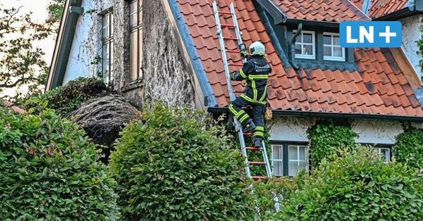 Efeu brennt am Einfamilienhaus: Feuerwehr verhindert Großbrand