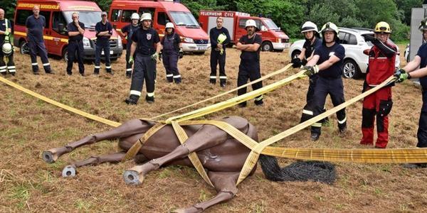 Feuerwehr übt Großtierrettung mit Pferde-Dummy in Bordesholm