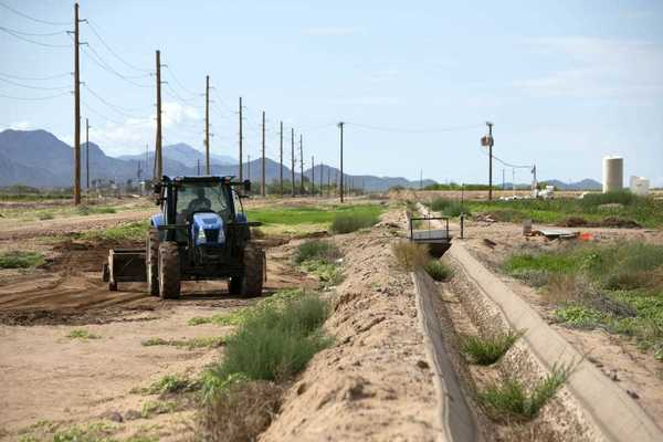 First-ever water shortage on the Colorado River will bring cuts for Arizona farmers