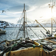Episode 31: Promoting Sustainability and Mitigating Illegal Fishing with Seafood Traceability