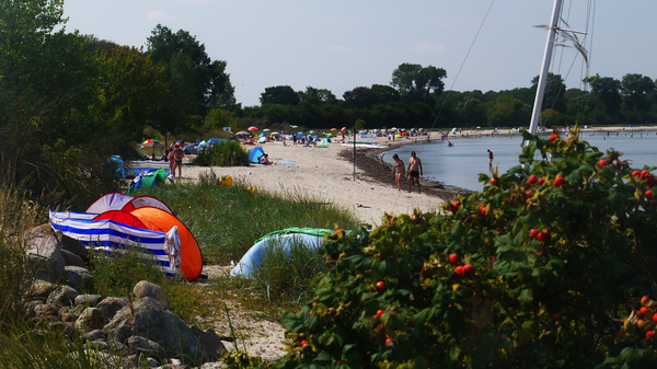 Ein Strandabschnitt in der Wohlenberger Wiek. (Foto: Helmut Kuzina)