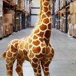 A stuffed giraffe explains inflation