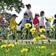 Neue Corona-Regeln: Was jetzt in Schleswig-Holstein gilt