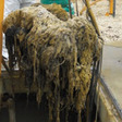 Prefabricated Space-Saving Solutions To Sewage System Pump Clogging