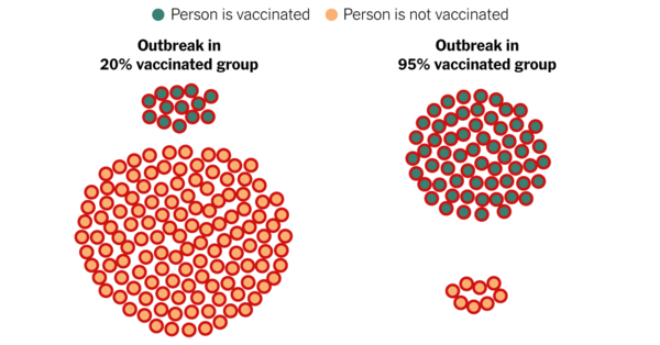 See How Vaccines Can Make the Difference in Delta Variant's Impact - The New York Times