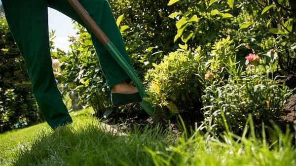 So schützen Sie ihren Garten vor Starkregen