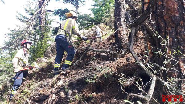 Calcinats 7.800 metres quadrats per un foc forestal a la Baronia de Rialb