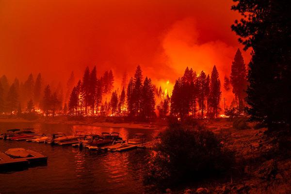 Kent Nishimura / Los Angeles Times via Getty Images