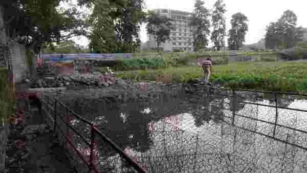 Member of HC-appointed panel seeks to halt reclamation work near Mumbai's Powai lake   Mumbai news - Hindustan Times