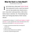 What the Heck is a Data Mesh? - Chris Riccomini