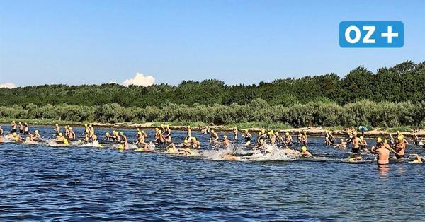 Wismarbucht-Schwimmen am 29. August: Regeln beim Wettkampf