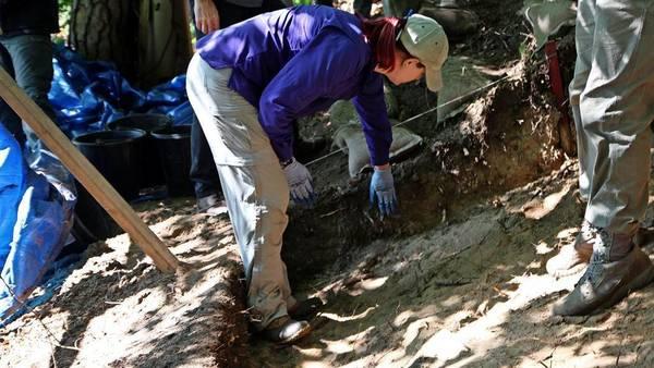 USA graben in Brandenburg nach abgestürztem Bomber aus dem Zweiten Weltkrieg