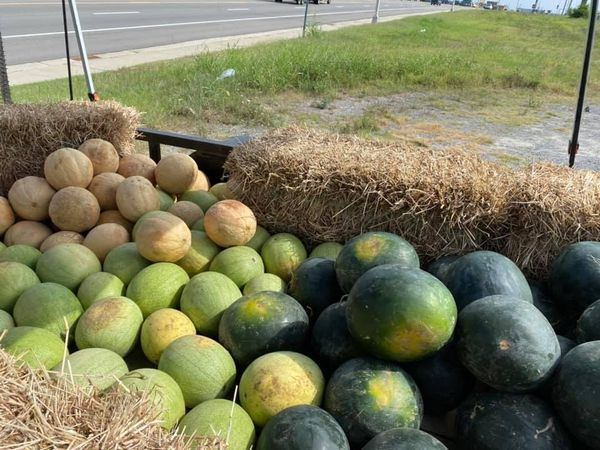 Looking for some yummy fruits? Check out Woodall's! Come by and get some!