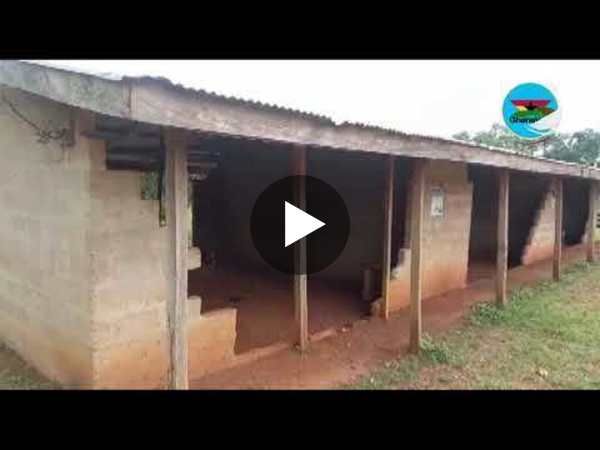 Addokrom community cries for help as Asamoah D A Primary turns a death trap