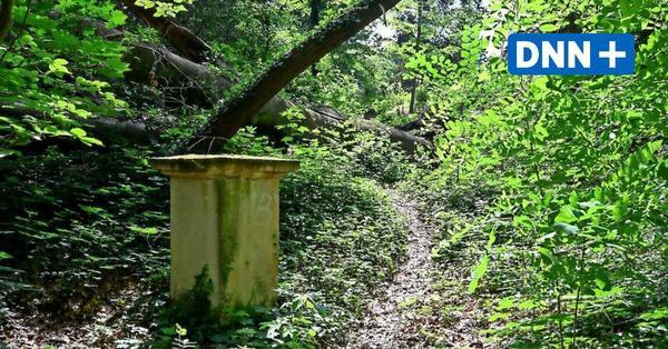 Dresdner Brockhaus-Park: Warum ein Denkmal weiter verfallen muss