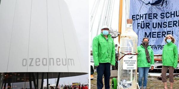 50 Jahre Greenpeace: Der Festakt in Stralsund hier ab 18.45 Uhr im Livestream