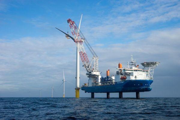 Éoliennes et oiseaux marins : attraction et répulsion - Windmolens en zeevogels: aantrekken en afstoten