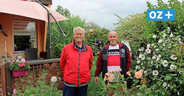 """Bald Bauland? """"Am Gespensterwald"""" in Nienhagen bangen Kleingärtner um ihre Gärten"""