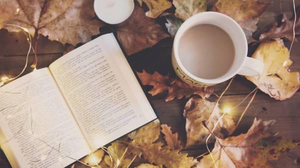 Herbst genießen: Kürbis, Halloween und goldene Natur - Warum man die Jahreszeit einfach lieben muss