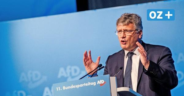 OZ-Leser-Talk mit AfD-Chef Jörg Meuthen: Hier den Stream ansehen