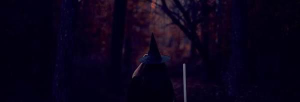Lokaal Spookverhaal: de heks van Holterberg