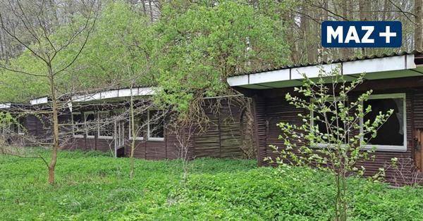 DDR-Bungalows wurden nie bezogen: Geister-Ferienlager bei Ziesar steht zur Versteigerung