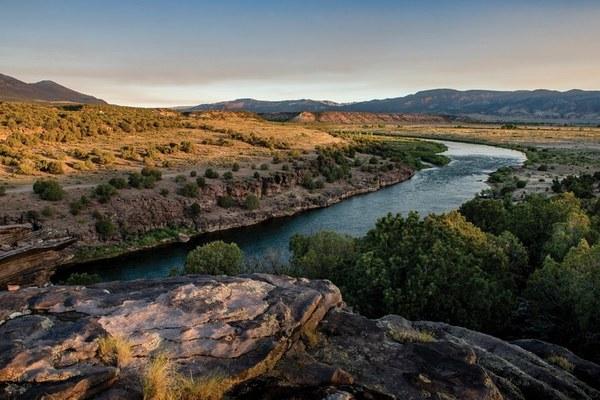 Wolves' perilous path to Colorado