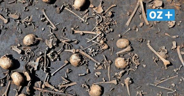 Schlacht im Tollensetal: Wer waren die getöteten Männer?