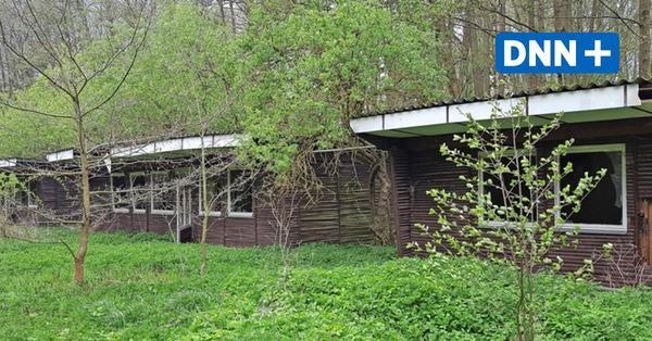 DDR-Bungalows wurden nie bezogen: Geister-Ferienlager in Brandenburg steht zur Versteigerung