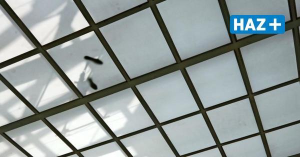 Vorwiegend heiter: Originelle Arbeiten bei der 89. Herbstausstellung des Kunstvereins