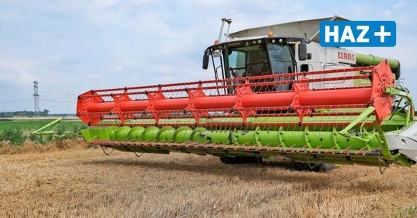 Nässe verzögert teilweise Ernte von Roggen und Weizen in Niedersachsen
