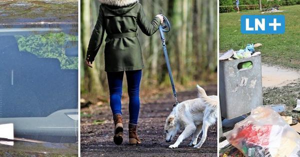 Parken, Hunde, Müll: Das nervt die Ostholsteiner am meisten