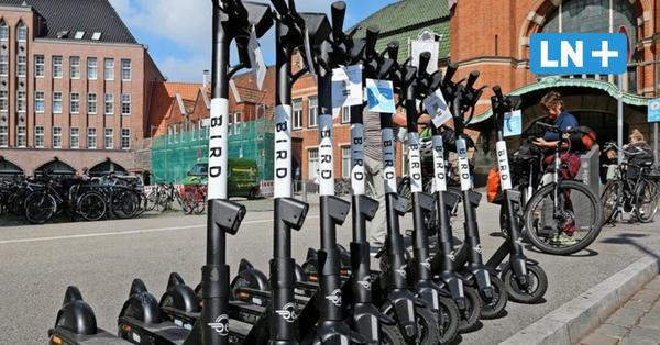 E-Roller: Drei Anbieter, über 1000 Fahrzeuge – und immer mehr Beschwerden