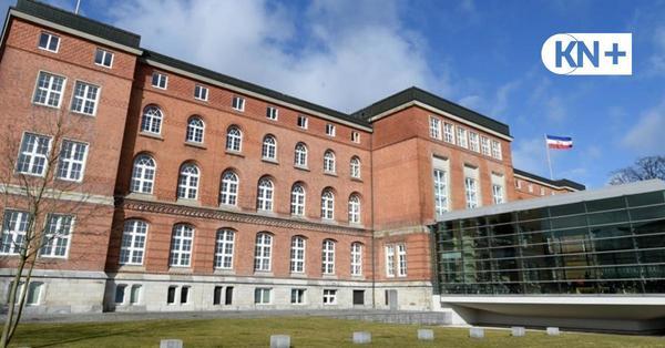 Fledermäuse dringen in Kieler Landtag ein und halten Sicherheitsdienst auf Trab