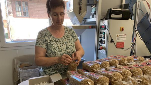 Bailleul : des pâtes fabriquées à la ferme - pasta gemaakt op de boerderij