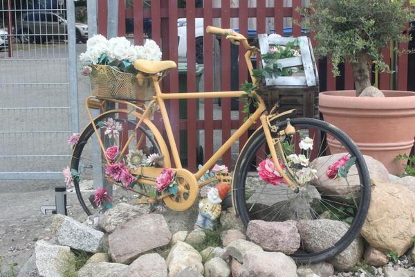 Blumenfahrrad in Steffenshagen (Foto: Lisa Walter)