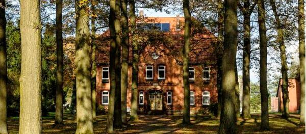 Anwesen in Weesen mit Bäumen und spätsommerlichem Lichtspiel. (Foto: www.lueneburger-heide.de)