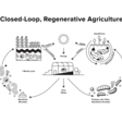 Story – Chapul Farms